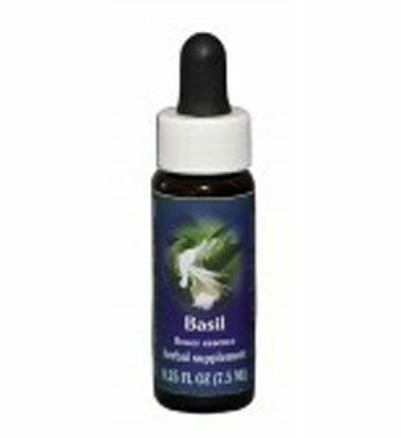 Basil Flower Essence