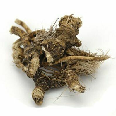 Osha Root Whole