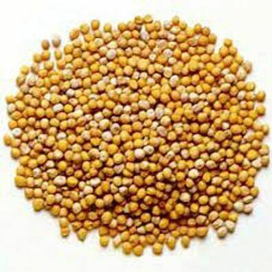 Mustard Seed, Yellow