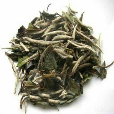 White Tea Pai Mutan