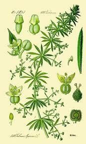 Cleavers (cut & sifted)