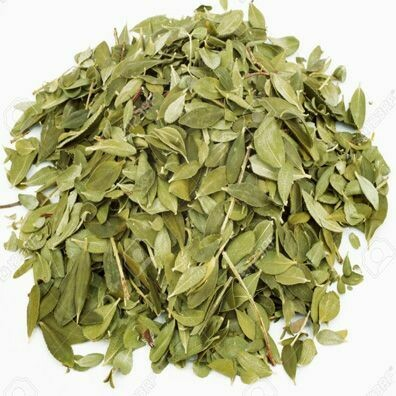 Buchu Leaves (cut & sifted)