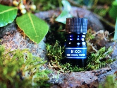 Birch Tree Perfume