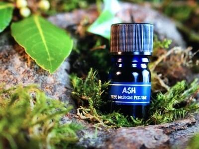 Ash Tree Perfume