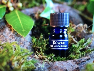 Rowan Tree Perfume