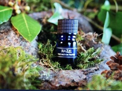 Hazel Tree Perfume