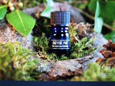Silver Fir Perfume