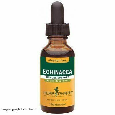 Echinacea  Immune Support