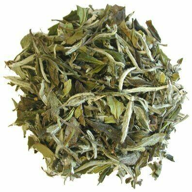 White Tea Peony