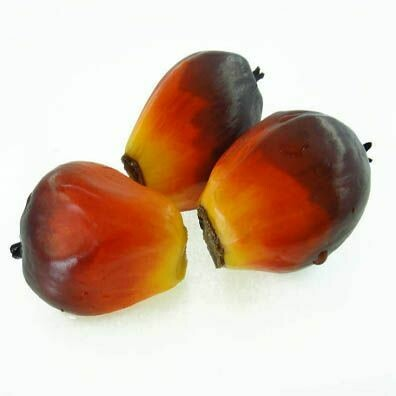Palm Fruit Oil -Sustainable