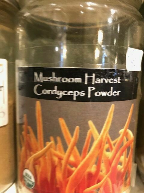 Cordyceps Mushrooms Powder