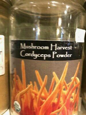 Cordyceps Mushrooms Powder