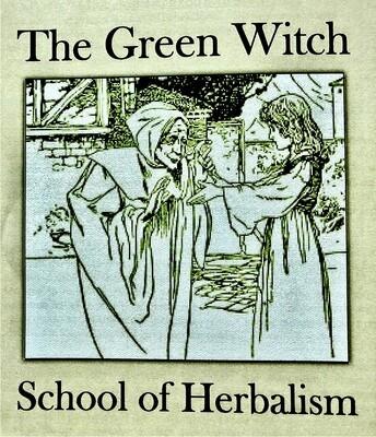 Green Witch School, Deposit