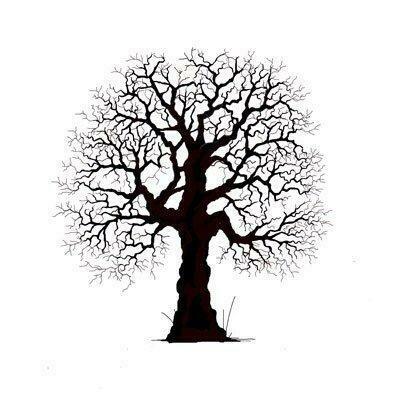 Stamp-Oak Tree