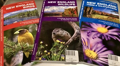 Pocket Naturalist Guide Trees/Wild Flowers