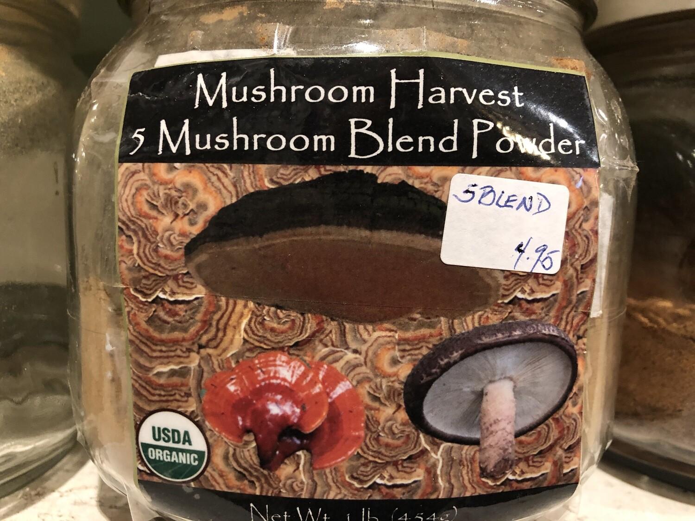 5 Mushroom Blend Powder