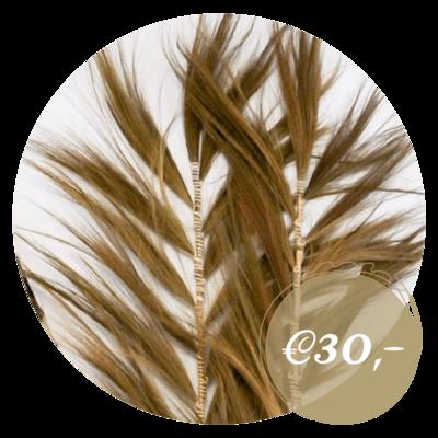 Decoratieve palmbladeren (p/st)
