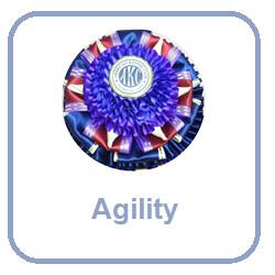 Agility Rosettes