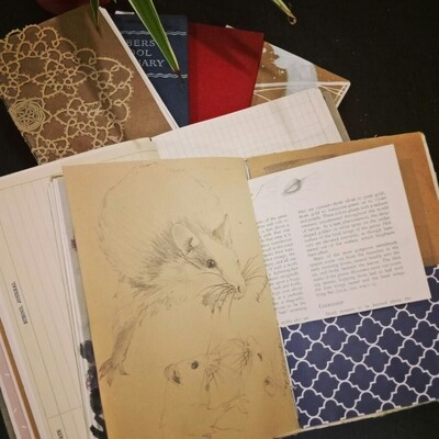 Make a Junk Journal - 1.30-4.30pm Sunday 17th January