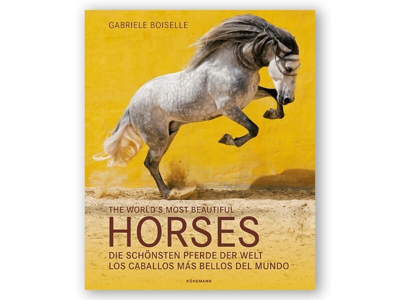 Buch: Die schönsten Pferde der Welt