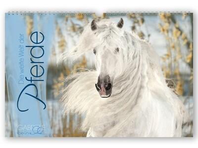 Panoramakalender Die weite Welt der Pferde
