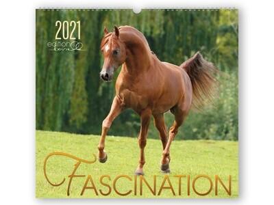 Kalender Fascination
