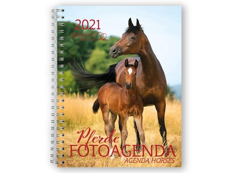 Pferde Fotoagenda 2021