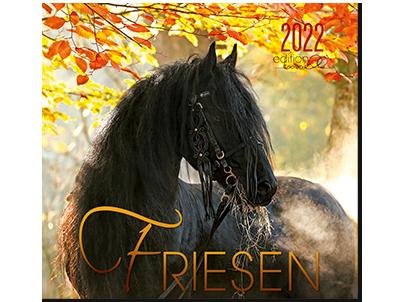Kalender Friesen 2022