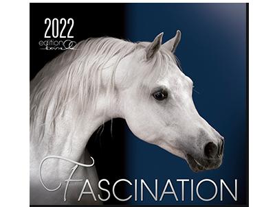 Kalender Fascination 2022