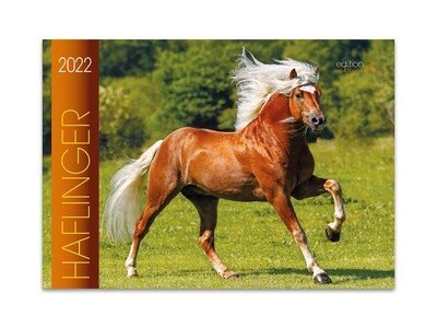 Kalender Haflinger 2022