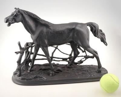 Конь в изгороди