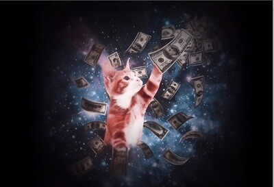 Mo money, mo kitten mask