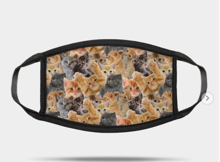Orange and Grey kitten mask