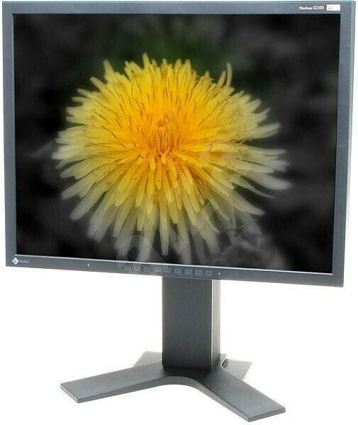 S2100 Eizo Monitor LCD 4:3 21 Pollici S2100 Ei