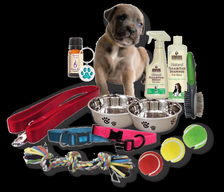 Puppy Essential Starter Kit