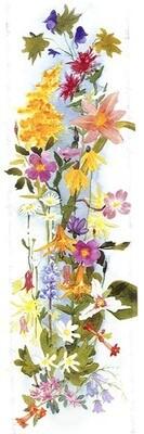 American Wildflowers 2