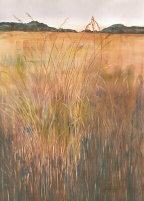 Copper Grass