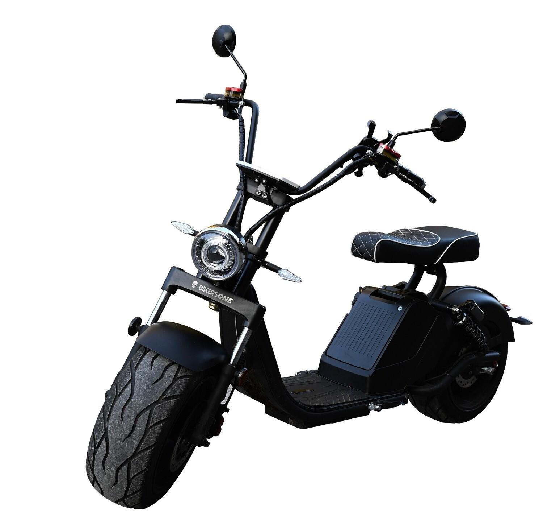 Ridelec BikersOne 45