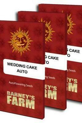 Wedding Cake Auto