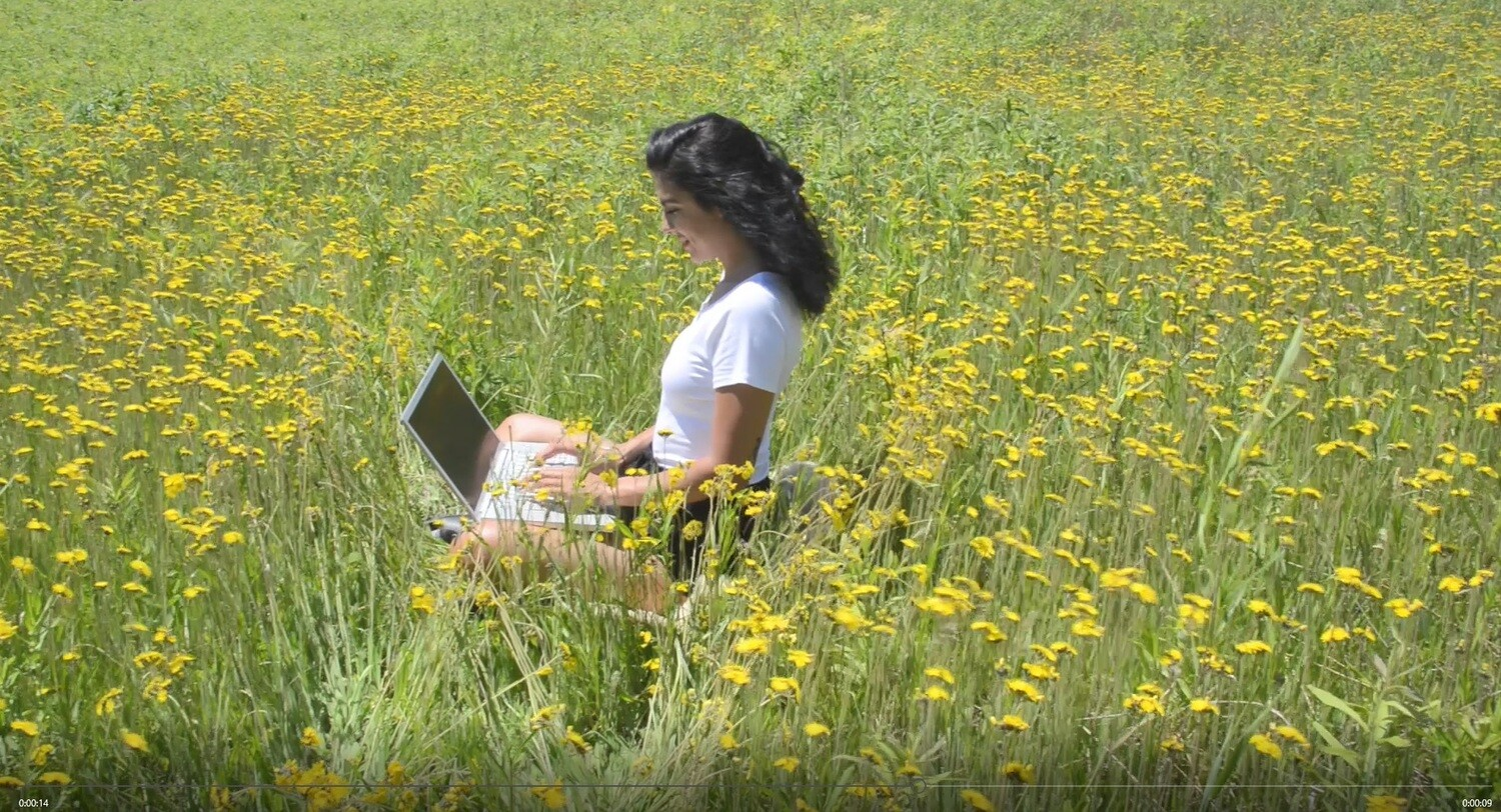 Yellow Flowers Typing 1
