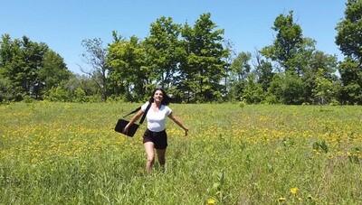 Yellow Flowers Running