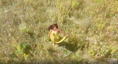 Fairy Field 237