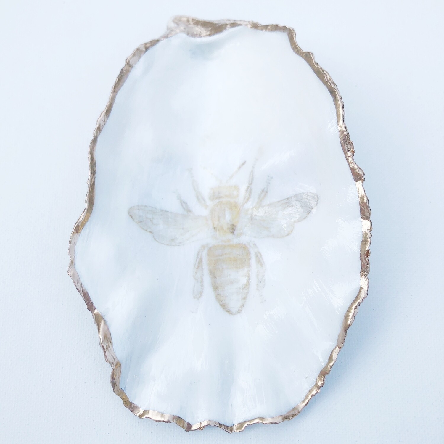 Bee Oyster Shell