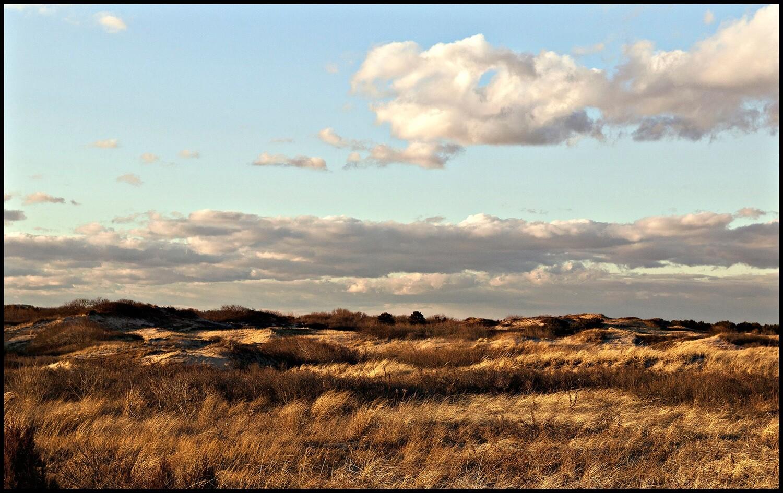 Dunes, Plum Island - Newburyport, MA