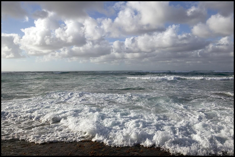 Surf - Oahu, HI