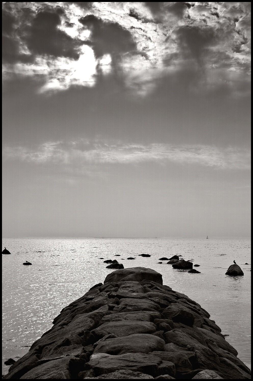 Jetty - Cape Cod, MA