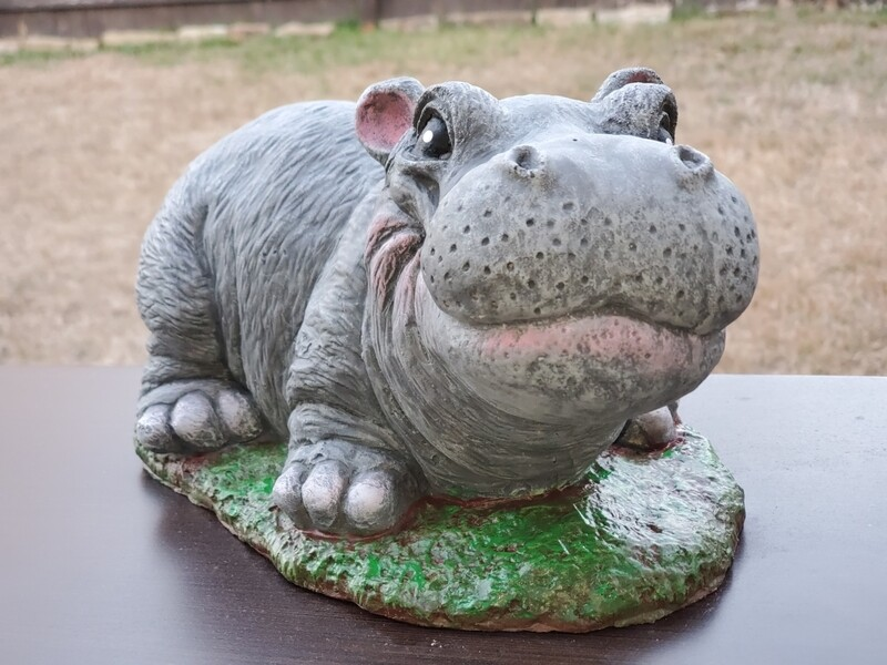 Adorable Hippo