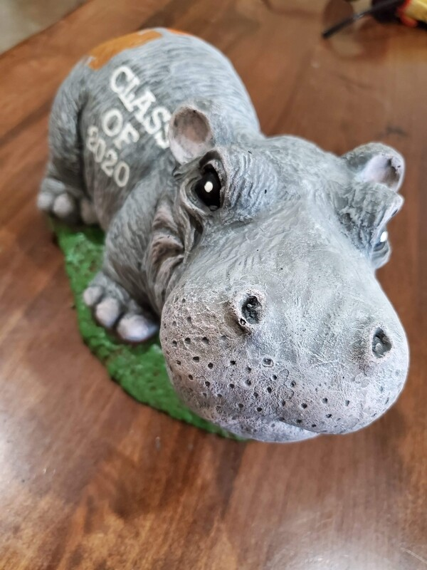 Adorable Hippo - Hutto Class Of  Design