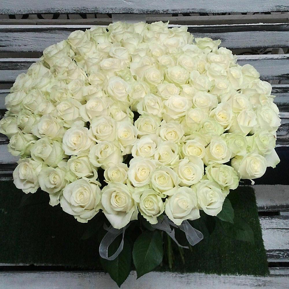 """101 Роза""""Мондиаль"""" 60 см"""