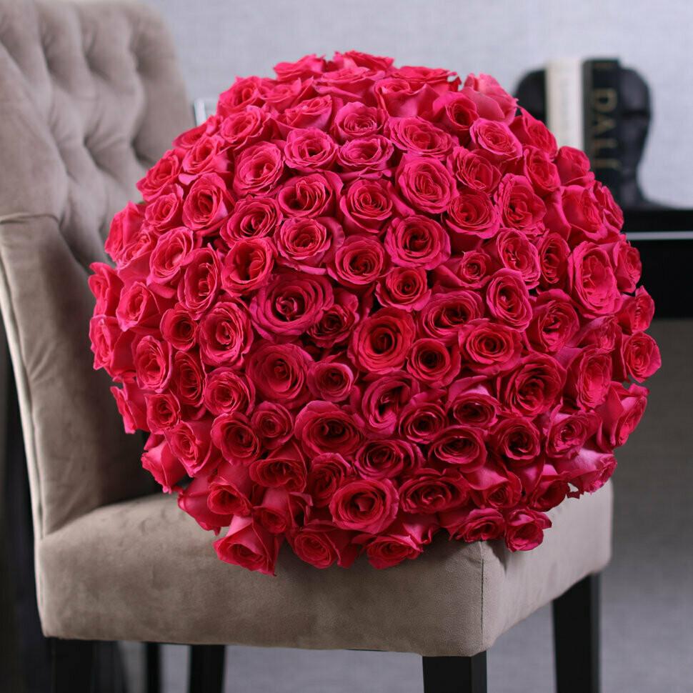 101 Роза Пинк Флойд (Pink Floyd rose) 60 см